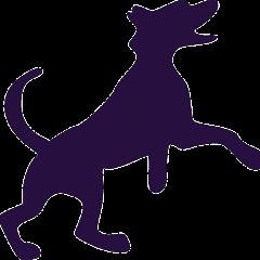 Dog jumpinfg